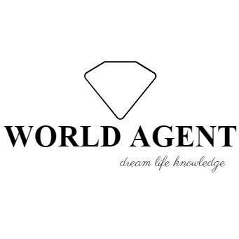 世界地產顧問